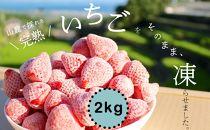 【受付終了2019.11.18】<限定>完熟!南島原産の冷凍いちご【2018年収穫】2kg(1kg×2個)