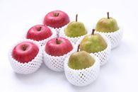 【2019年度先行受付】どちらも食べたい!「サンふじりんご&ラ・フランス詰め合わせセット3㎏」