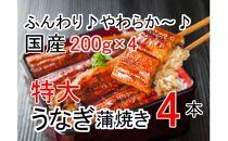 ふんわり♪やわらか♪うなぎ蒲焼き4本(200g程度×4本)