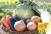 新鮮!シャキシャキ!野菜詰め合わせ(7~8種類程度 1回発送)