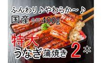 ふんわり♪やわらか♪うなぎ蒲焼き2本(200g程度×2本)