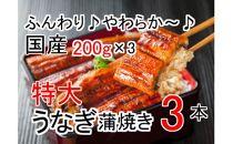 ふんわり♪やわらか♪うなぎ蒲焼き3本(200g程度×3本)