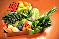 シェフの目線「大洲もぎたてフルーツ&旬野菜詰合せ」