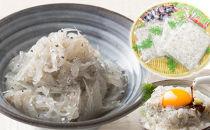 高知産「生シラス」イワシ稚魚100g×5パック入り(タレ付)