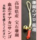 小さい血赤珊瑚根付 本物の宝石(サンゴ)高知県産血赤珊瑚の赤を見てみたいという方に!