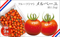 高知産フルーツトマト「メルベーユ」 約1.5㎏
