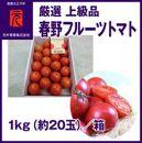 春野フルーツトマト/厳選上級品/1kg(約20玉)/元木青果
