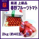 春野フルーツトマト/厳選上級品/2kg(約40玉)/元木青果