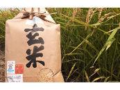 滋賀県産低農薬有機肥料コシヒカリ玄米5Kg