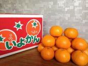 柑橘王国愛媛産柑橘【伊予柑】5kg~まごころ手選り手詰め