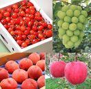 【全4回】フルーツ定期便 さくらんぼ/もも/ぶどう/りんご