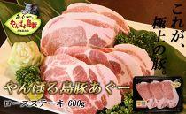 やんばる島豚あぐーロースステーキ600g