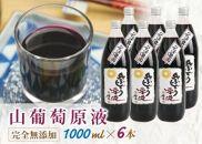 山ぶどう原液果汁ジュース1000ml×6本入り AT18