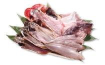 銚子の底魚(竹)