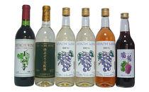 常陸ワイン「山ブドウ交配種小公子・ワイングランド白・巨峰白・ロゼ」と葡萄ジュースのセット