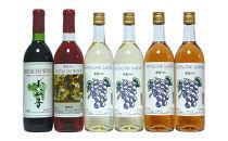 常陸ワイン「山ブドウ交配種小公子・山ブドウ交配種ロゼ・巨峰白・ロゼ」のセット