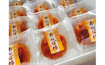 紀州手作りあんぽ柿 フルーツギフト