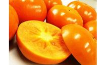 ケーズファーム人気商品!富有柿赤秀2L~3L11~12個入り