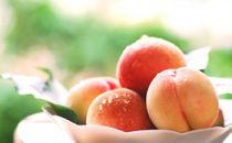 【10/1~受付開始】<限定>南島原の特別栽培ハウス桃(Mサイズ)【4パック】