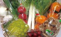 旬の野菜と果実の詰め合わせ