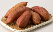 【受付終了】【ご家庭用】安納芋【鹿児島大崎産さつまいも】5kg
