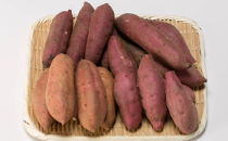 【受付終了】【ご家庭用】鹿児島大崎産三種のさつま芋詰め合わせ