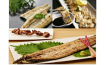 鹿児島県大隅産 千歳鰻の数量限定★特大★鰻白焼3尾・蒲焼きのタレセット
