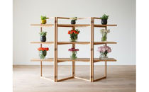 SPAGO Shelf 168 oak