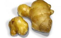 高知県産 生姜(洗い) 1kg