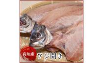高知県産アジ開き(10尾)鯵真あじの干物岡岩商店