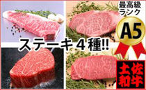 土佐和牛プレミアムビフテキセット牛肉ステーキ