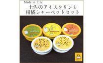 Madein土佐のアイスクリンと柑橘シャーベットセット/高知アイス