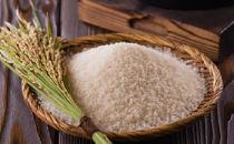 本腰米(白)10kg
