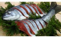 ぼだっこ(塩紅鮭) 中辛 半身(約950g)