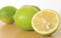 曽保海のレモン(1.5kg)