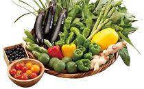 季節の野菜果物詰め合わせ(おまかせセット)