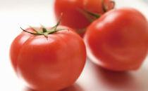 白河高原野菜旬太郎トマト1kg×1箱