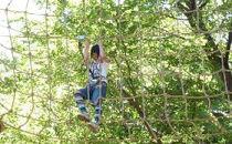 森の空中散歩!フォレストアドベンチャー・おおひら 体験チケット(上級コース、17歳以下)