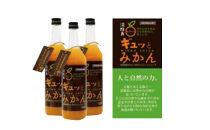 淡路島ギュッとみかん 720mL(4本入り)