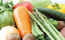 竜王産野菜詰め合わせセット