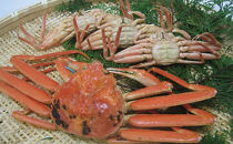 石川県産加能かに(ずわい蟹)・香箱かに詰合せ(計4匹)
