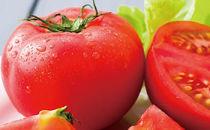 【期間限定】高原トマト4kg