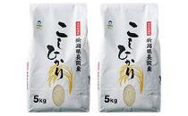 〈新潟県・小原農場〉新潟県長岡産特別栽培米こしひかりB