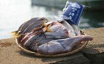旬の魚5種詰め合わせ