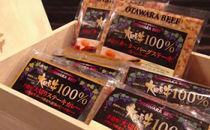 【2名様分】大田原牛 ハンバーグ・カレー・シチューの詰め合わせセット
