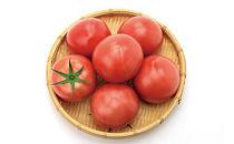 【喜茂別産】有機栽培トマト2kg