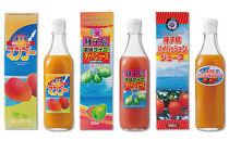菓心利休 パッション・グァバ・マンゴージュースセット