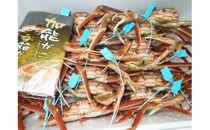 西海ガンチ・満腹セット(活セット)【漁獲次第発送】