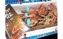 【2018年度受付終了】西海ガンチ・夫婦セット(活セット)【漁獲次第発送】