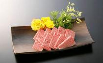 大府市特産A5ランク黒毛和牛 極上焼肉セット(ロース肉)500g